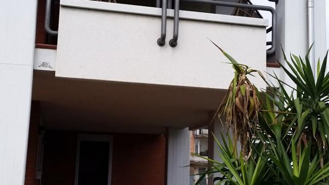 Campus zona residenziale villetta con giardino